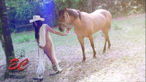 Filme porno cu cai care isi baga pula in femei xxx in padure